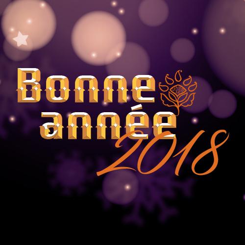 Square-Bonneannée2018